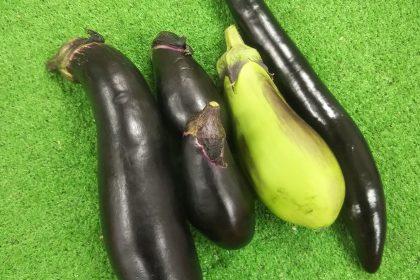 狭山の野菜の直売所のふれあいファームセンターの今月のオススメのお野菜のなすの画像